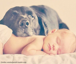 bebè e cane
